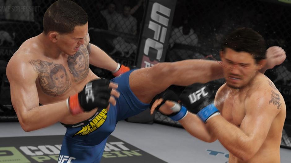 UFC2014Article-02